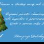 PF 2014. Novoročenka Delishopu.